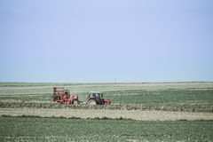 Red tractor in a spring field Royalty Free Stock Image