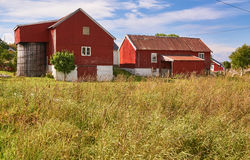 Red traditional barn for hay, wooden buildings Royalty Free Stock Photography