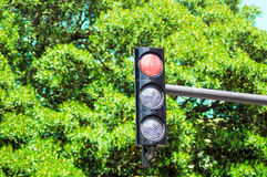 Red traffic light Royalty Free Stock Photo