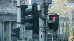 Red traffic light pole in Winter in Melbourne Australia. Red traffic light pole with a red man blinking in Winter in Melbourne Australia Stock Image