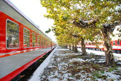 The red train on platform in winter. The red train on platform with trees in winter Royalty Free Stock Photos