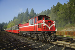 Red train on railway forest in Taiwan stock images