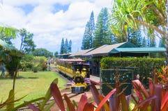 Red train take tourist around the Dole pinapple plantation in Oahu Island Hawaii. Oahu June 2012: this red train take tourist visiting the big Dole pinapple Royalty Free Stock Image