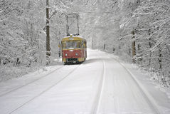 Red tram on white snow. Stock Photo