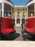 Red trams Stock Image