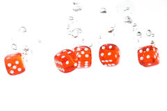 Red Transparent Dice Falling Into The Water Royalty Free Stock Images