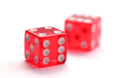 Red transparent dice isolated on white background Royalty Free Stock Images