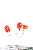 Red transparent dice jumping out of the water Royalty Free Stock Photos