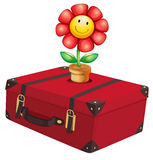 A red travelling bag with a plant. Illustration of a red travelling bag with a plant on a white background Stock Photos