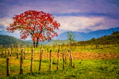 Red tree and autumn landscape impression Stock Photo