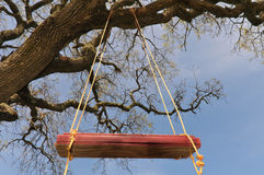 Red Tree Swing Hangs From A Large Oak Branch Royalty Free Stock Image