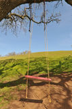Red Tree Swing Hangs From A Large Oak Branch Royalty Free Stock Photos