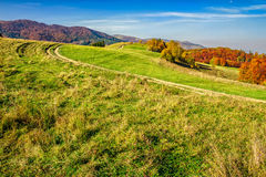 Red trees on meadow in mountains. Autumn mountain landscape. yellow, red and orange trees near the path through the hill side meadow stock image