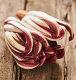 Red Treviso radicchio. Italian red radicchio Treviso salad on an old table Royalty Free Stock Image