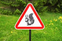 Red triangle sign warning  of the presence squirrels on the background of green trees in the park.  stock photos