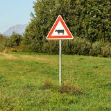 Red triangle warning cows crossing sign, on a green meadow, tree stock image