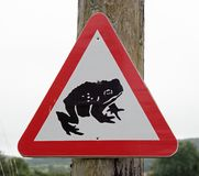 A red triangle warning sign with a black toad in the triangle. A red triangle warning sign fixed to a post warns of the presence of toads Royalty Free Stock Photography