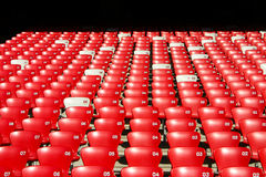 Red Tribune Seats in a stadium - front view Royalty Free Stock Photography