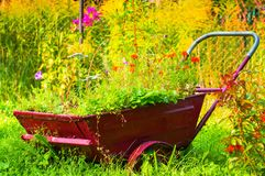 Red Trolley with flowers, Beautiful garden at sunset in the country holiday home. Red Trolley with flowers, Beautiful garden at sunset in the country holiday stock photography