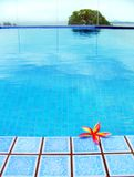 Red Tropical Flower, Blue Resort Swimming Pool Stock Image