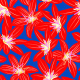Red tropical hibiscus floral design seamless pattern Royalty Free Stock Images
