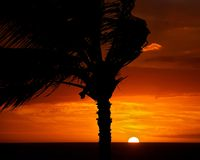 Red tropical sunset Stock Photography