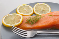 Red trout fillet Royalty Free Stock Photo