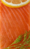 Red trout Stock Images
