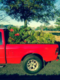 Red truck bed with wreaths Stock Photos