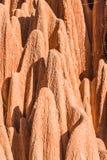 Red tsingy Royalty Free Stock Photos