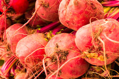 Red tubers. In a market place Royalty Free Stock Images
