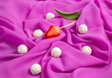 Red tulip on a background of pink soft thin fabric lined with waves. With white candy royalty free stock photos