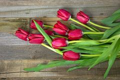 Red tulip bouquet. On rustic wood Royalty Free Stock Image