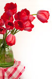 Red Tulip Bouquet on White Background with Copy Space Royalty Free Stock Photos
