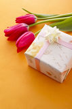 Red tulip flower. Red tulip and gift box on orange background Stock Photo