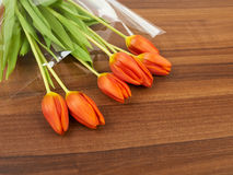 Red tulip flowers on, background Stock Photography