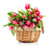 Red tulip flowers in a basket Royalty Free Stock Photos