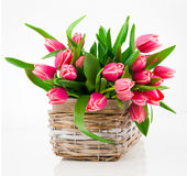 Red tulip flowers in a basket Royalty Free Stock Photo