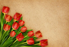 Red tulip flowers bouquet in a corner on craft paper Stock Photos