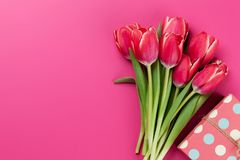 Red tulip flowers bouquet and gift box Stock Image