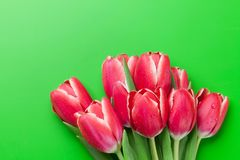 Red tulip flowers bouquet over green background Royalty Free Stock Photo