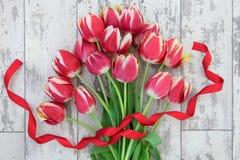 Red Tulip Flowers Stock Image
