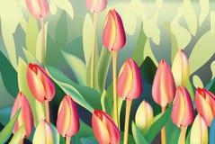 Red tulip flowers Spring season invitation background. Vector illustration Stock Photos
