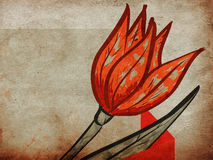 Red tulip on grunge background Stock Photography