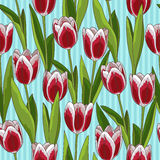 Red tulip seamless pattern, blue background. Red tulip flower spring seamless pattern or background, blue background Stock Photography