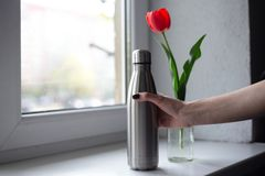 Red tulip with steel bottle on the background of the window stock photos