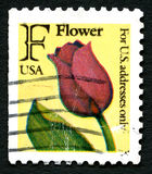 Red Tulip USA Postage Stamp Royalty Free Stock Photo