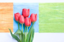 Red tulips on art deco squares Royalty Free Stock Image
