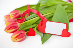 Red Tulips with a blank card Stock Photo