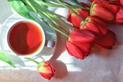 Red tulips. Bouquet of red tulips with a cup of tea on white-silver background Stock Photos